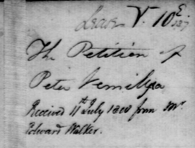VERMILYEA PETER 1808 Land petition snippet